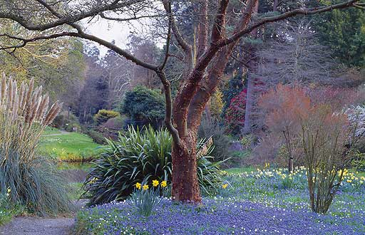 Mount Usher Gardens -- Republic of Ireland